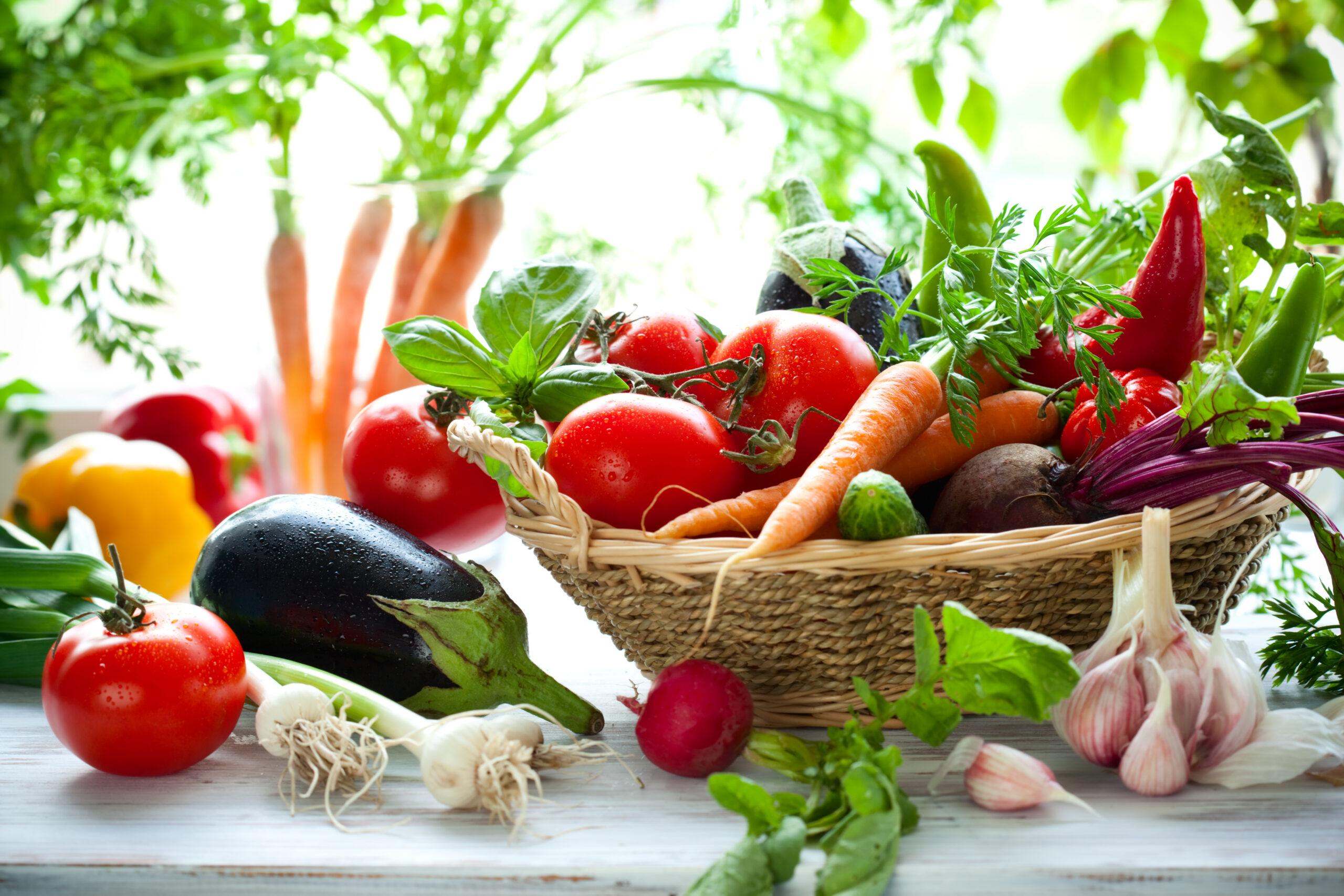 Conoce los conceptos clave en nutrición